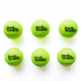 Feed Buddy Tennis Balls ( Pack of 6)